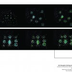 AASH 2012_presentation_FINAL_Page_30